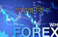 About Forex