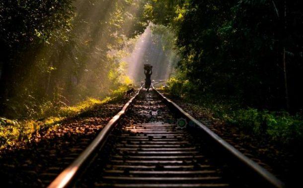 চলছে উন্মুক্ত ছবি তোলার প্রতিযোগিতা 'উইকি লাভস আর্থ ২০১৮'