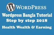 Create a wordpress website & Earn per month 500$ from adsence Part 1
