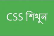 CSS কি?